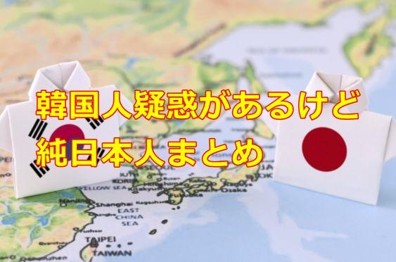 kankokujingiwaku-junnihonjin